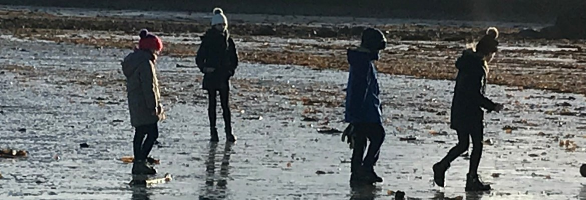 Winter- Beach  Thumbnail0